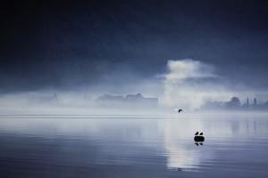 A1 - Marija Pavkov -Kotor u magli
