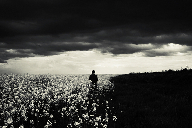 A2-felicia simion-the middle